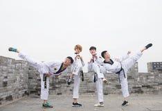 Μαύρη ζώνη Taekwondo στο Σινικό Τείχος Στοκ Εικόνα