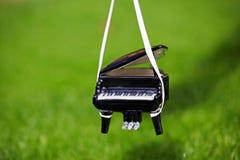 Μαύρη ημέρα κήπων φθινοπώρου πιάνων Στοκ Εικόνες