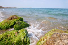 Μαύρη Θάλασσα Στοκ Φωτογραφίες