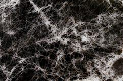 Μαύρη μαρμάρινη σύσταση με τα μέρη αντιπαραβαλλόμενο Στοκ φωτογραφία με δικαίωμα ελεύθερης χρήσης