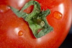 μαύρη ντομάτα ανασκόπησης Μακροεντολή Στοκ Φωτογραφίες