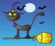 μαύρη νύχτα μυγών γατών σκου& διανυσματική απεικόνιση