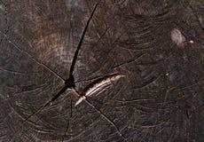 Μαύρη ξύλινη σύσταση Στοκ Φωτογραφία