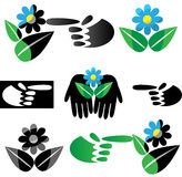 μαύρη πράσινη ζωή θανάτου Στοκ Εικόνα