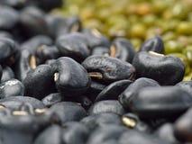 μαύρη σειρά τροφίμων φασολιών ανασκόπησης Στοκ φωτογραφία με δικαίωμα ελεύθερης χρήσης