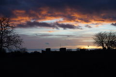 Μαύρη σκιαγραφία της φύσης στο λυκόφως Στοκ φωτογραφία με δικαίωμα ελεύθερης χρήσης