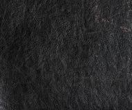 μαύρη σύσταση δέρματος στοκ φωτογραφίες με δικαίωμα ελεύθερης χρήσης