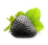 Μαύρη φράουλα μούρων Στοκ φωτογραφία με δικαίωμα ελεύθερης χρήσης