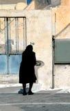 μαύρη χήρα Στοκ φωτογραφία με δικαίωμα ελεύθερης χρήσης