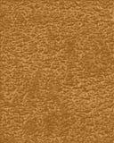 μαύρισμα δέρματος Στοκ εικόνα με δικαίωμα ελεύθερης χρήσης