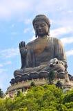 μαύρισμα του Βούδα tian Στοκ Εικόνα