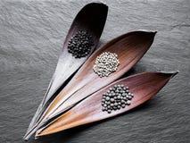 Μαύροι, άσπροι και ευώδεις σωροί των σιταριών πιπεριών στις ξηρές χοάνες φύλλων στη μαύρη πέτρινη επιφάνεια υποβάθρου στοκ εικόνες