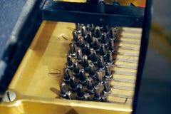Μαύροι ξύλινοι συντονίζοντας γόμφοι πιάνων, συντονίζοντας καρφίτσες πιάνων, υγιής συντονισμός πιάνων στοκ εικόνα με δικαίωμα ελεύθερης χρήσης