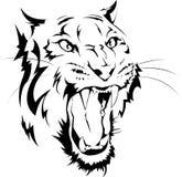 Μαύρος-άσπρη εικόνα μιας τίγρης Στοκ φωτογραφία με δικαίωμα ελεύθερης χρήσης