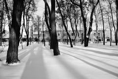 Μαύρος-άσπρη φωτογραφία Πάρκο Gogol Nikolai σε Nizhyn, καλυμμένο η Ουκρανία χιόνι Στοκ φωτογραφίες με δικαίωμα ελεύθερης χρήσης