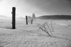μαύρος άσπρος χειμώνας Στοκ Εικόνα