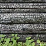 μαύρος απανθρακωμένος τ&omicron Στοκ φωτογραφία με δικαίωμα ελεύθερης χρήσης