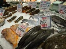 Μαύρος βακαλάος, rockfish, αστακός, και άλλη συνεδρίαση θαλασσινών στον πάγο ενός μετώπου καταστημάτων σε μια αγορά ψαριών στοκ φωτογραφία με δικαίωμα ελεύθερης χρήσης