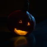 μαύρος γρύλος Στοκ φωτογραφίες με δικαίωμα ελεύθερης χρήσης