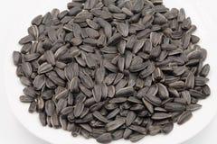 μαύρος ηλίανθος σπόρων Στοκ Εικόνα