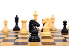μαύρος ιππότης σκακιού Στοκ Φωτογραφίες
