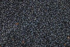 μαύρος καφές φασολιών ανασκόπησης Στοκ Φωτογραφία
