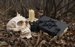 Μαύρος μαγικός στο δάσος Στοκ Εικόνες