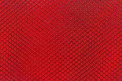 Μαύρος νάυλον καθαρός στο κόκκινο υπόβαθρο Στοκ φωτογραφία με δικαίωμα ελεύθερης χρήσης