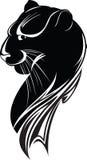 μαύρος πάνθηρας ελεύθερη απεικόνιση δικαιώματος