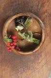 Μαύρος chokeberry και arrowwood Στοκ Φωτογραφία