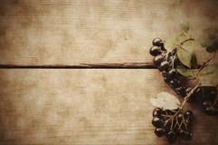 Μαύρος chokeberry στο ξύλινο υπόβαθρο στοκ φωτογραφίες