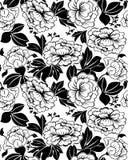 μαύρο άνευ ραφής λευκό peonies απεικόνιση αποθεμάτων