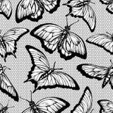 Μαύρο άνευ ραφής σχέδιο δαντελλών με τις πεταλούδες και δικτυωτό πλέγμα στο άσπρο υπόβαθρο Στοκ Εικόνες