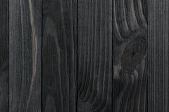μαύρο δάσος σύστασης Στοκ εικόνα με δικαίωμα ελεύθερης χρήσης