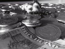 Μαύρο & άσπρο θαλασσινό κοχύλι στα νομίσματα Στοκ φωτογραφία με δικαίωμα ελεύθερης χρήσης