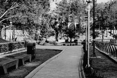 Μαύρο άσπρο πάρκο στη χώρα μου στοκ εικόνες