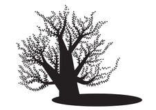 Μαύρο δέντρο με το φύλλο στο άσπρο υπόβαθρο, διανυσματική εικόνα, απεικόνιση Στοκ εικόνα με δικαίωμα ελεύθερης χρήσης