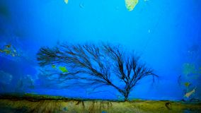 μαύρο δέντρο Στοκ φωτογραφίες με δικαίωμα ελεύθερης χρήσης