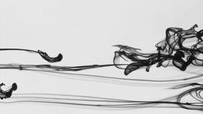 Μαύρο αεριωθούμενο αεροπλάνο του μελανιού στο άσπρο υπόβαθρο Όμορφες μετακινήσεις του μαύρου χρώματος κάτω από το νερό απόθεμα βίντεο