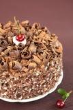 Μαύρο δασικό κέικ στοκ φωτογραφίες