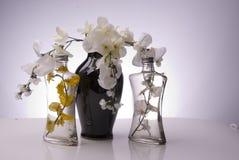 Μαύρο βάζο με τα σαφή μπουκάλια και τα λουλούδια Στοκ Εικόνες