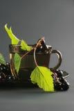 μαύρο βοτανικό τσάι σταφίδ&omeg Στοκ Φωτογραφίες