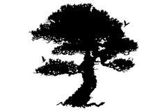 μαύρο δέντρο διανυσματική απεικόνιση