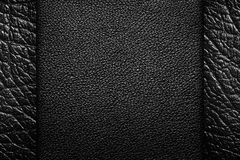 Μαύρο δέρμα Στοκ εικόνες με δικαίωμα ελεύθερης χρήσης