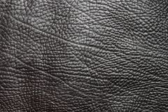 μαύρο διάνυσμα δέρματος α&nu Στοκ εικόνες με δικαίωμα ελεύθερης χρήσης