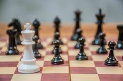 Μαύρο ενέχυρο που περιβάλλεται από τα άσπρα κομμάτια σκακιού σε έναν πίνακα σκακιού Στοκ Φωτογραφίες