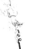 μαύρο λευκό καπνού ανασκό&p στοκ εικόνα