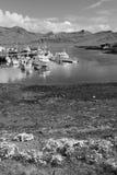 Μαύρο λευκό της Ισλανδίας Στοκ εικόνες με δικαίωμα ελεύθερης χρήσης