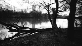 μαύρο λευκό Στοκ εικόνες με δικαίωμα ελεύθερης χρήσης
