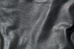 μαύρο διάνυσμα δέρματος α&nu Στοκ φωτογραφίες με δικαίωμα ελεύθερης χρήσης
